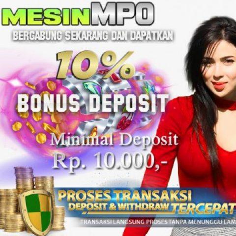 Profile picture of MesinMpo